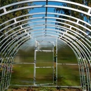 Поликарбонатная теплица Тундра Ферма шириной 3 м, профиль 20х20 мм шаг между дугами 0,67 м