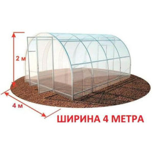 Теплица из поликарбоната МЗТ-4 40Ц-0,5 от производителя «Минский завод теплиц»
