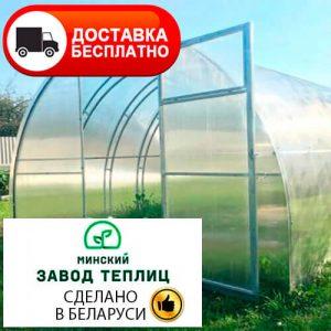 Теплица из поликарбоната Тундра Ферма с двойными дугами 20х20 мм, шаг 67 см