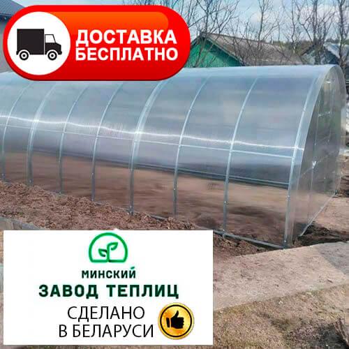 Теплица из поликарбоната Тундра Стандарт труба 20х20, шаг 1 м