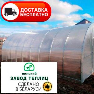 Теплица из поликарбоната Тундра Усиленная шаг 67 см, труба 40х20