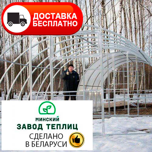 Теплица Тундра Широкая шириной 4 м, труба 40х20, шаг 0,67 м