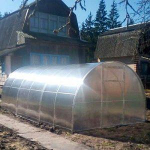 Усиленная теплица из поликарбоната с шагом между дугами 67 см